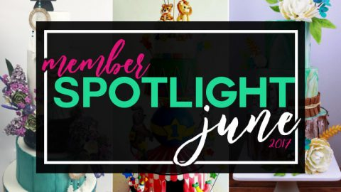 Member's Cakes Spotlight for June
