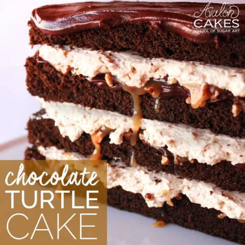 The Best Chocolate Turtle Cake