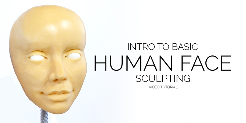 Zbrush tutorial now available: sculpting male and female faces.