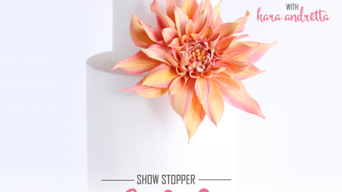 Show Stopper Dahlia