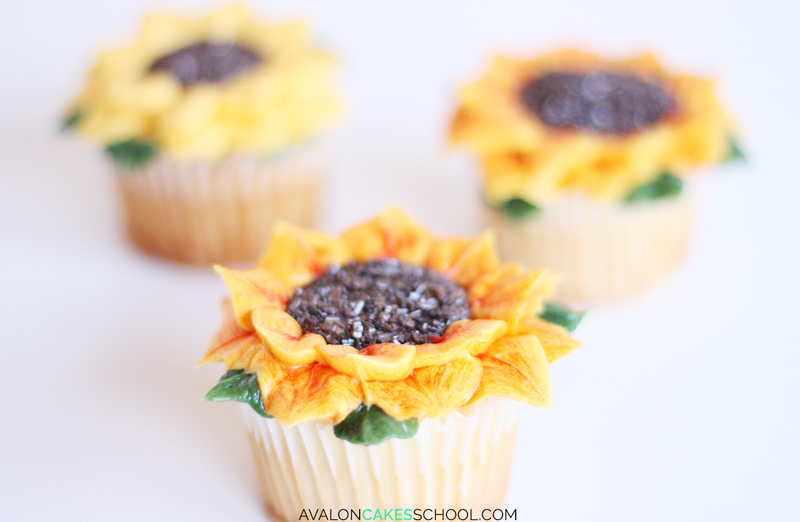 sunflower-cupcake-easy-how-to-make-buttercream-sprinkles-tutorial-no-tips-do
